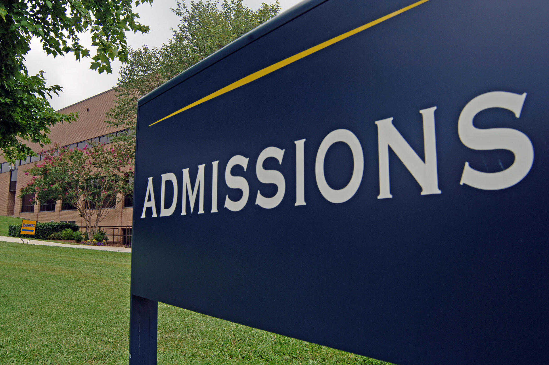 What do admissions officers dislike in college essays