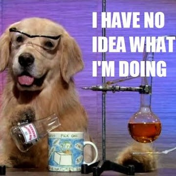 i-have-no-idea-what-im-doing-science-dog1-e1441990266456.jpg